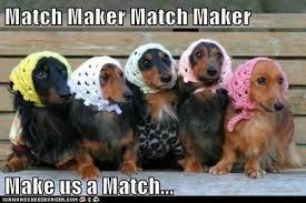 Matchmaker make me a match!