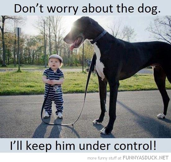 Little boy walking huge dog on hollywood blvd