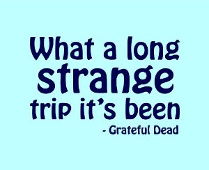 what a long strange trip it has been