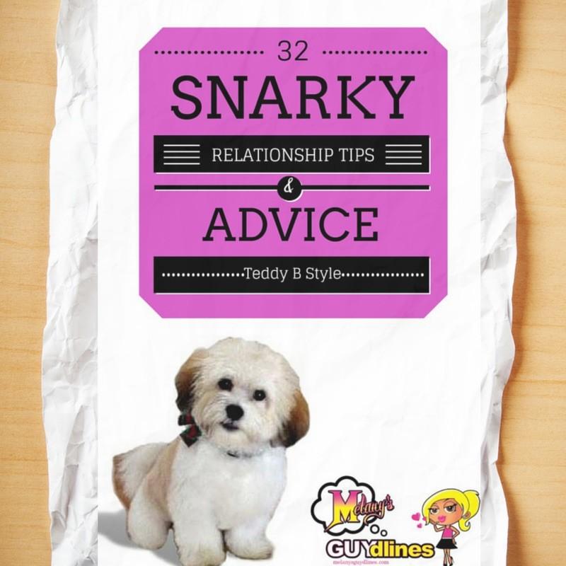 32 snarky relationship tips from my dog Teddy brewski - part 2