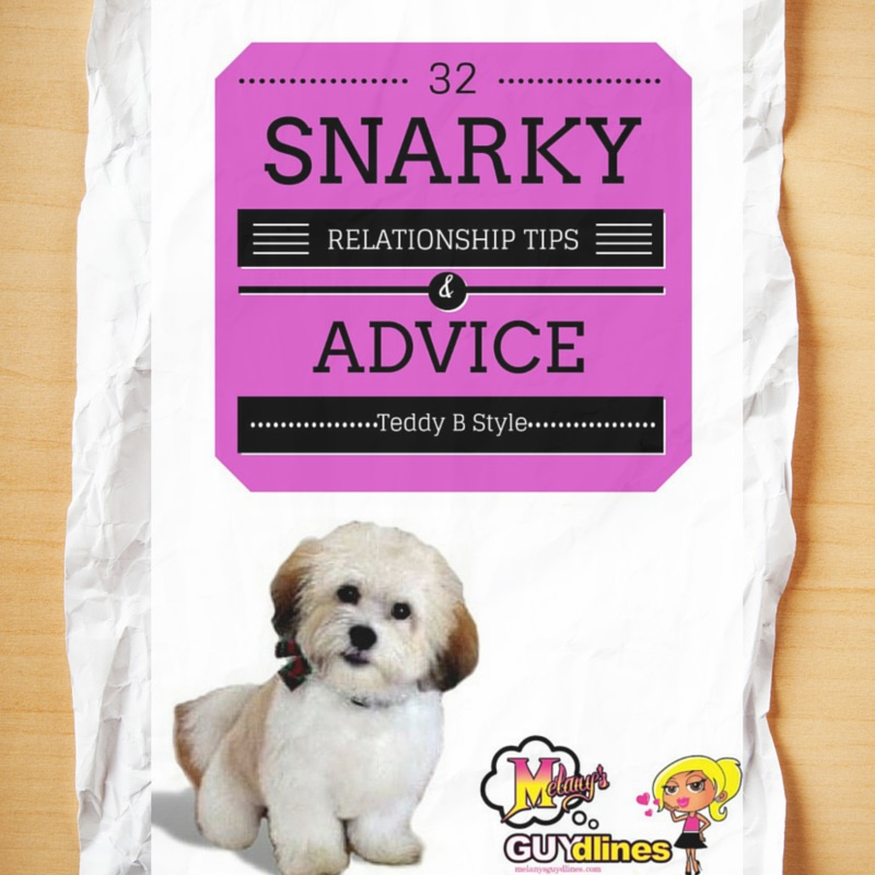 32 snarky relationship tips from my dog Teddy brewski  - part 2