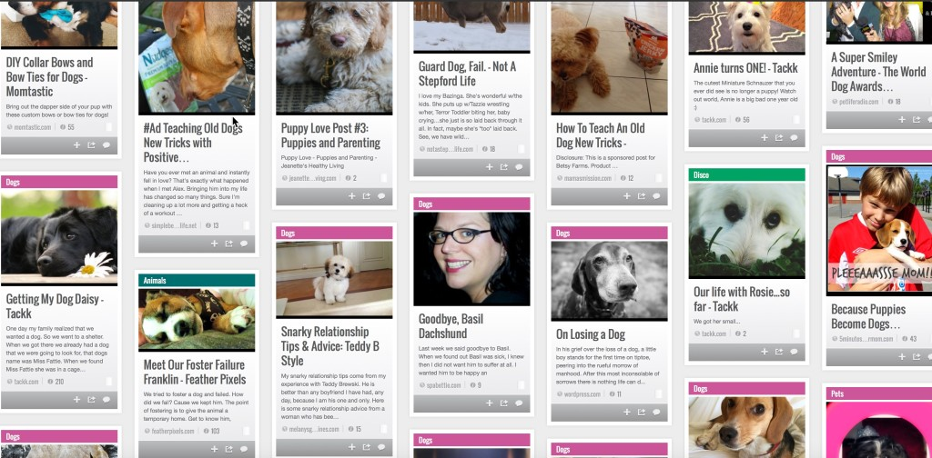 stumbleupon all things dogs