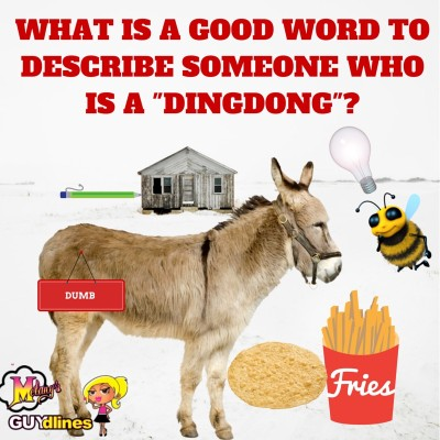 """What is a good word to describe someone who is a """"dingdong""""?"""