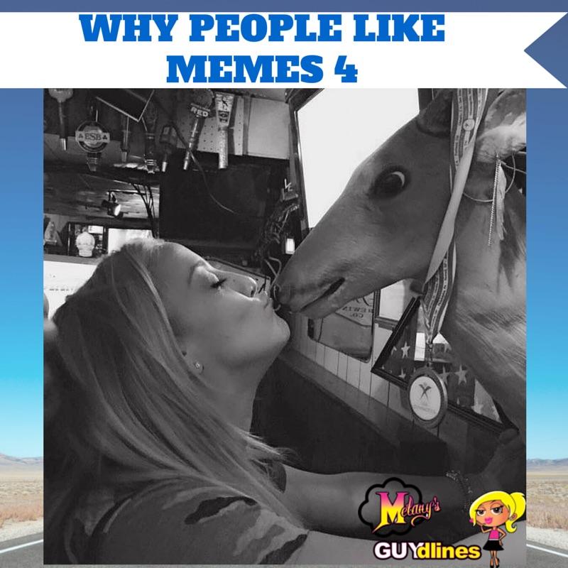 Why People Like Memes 4