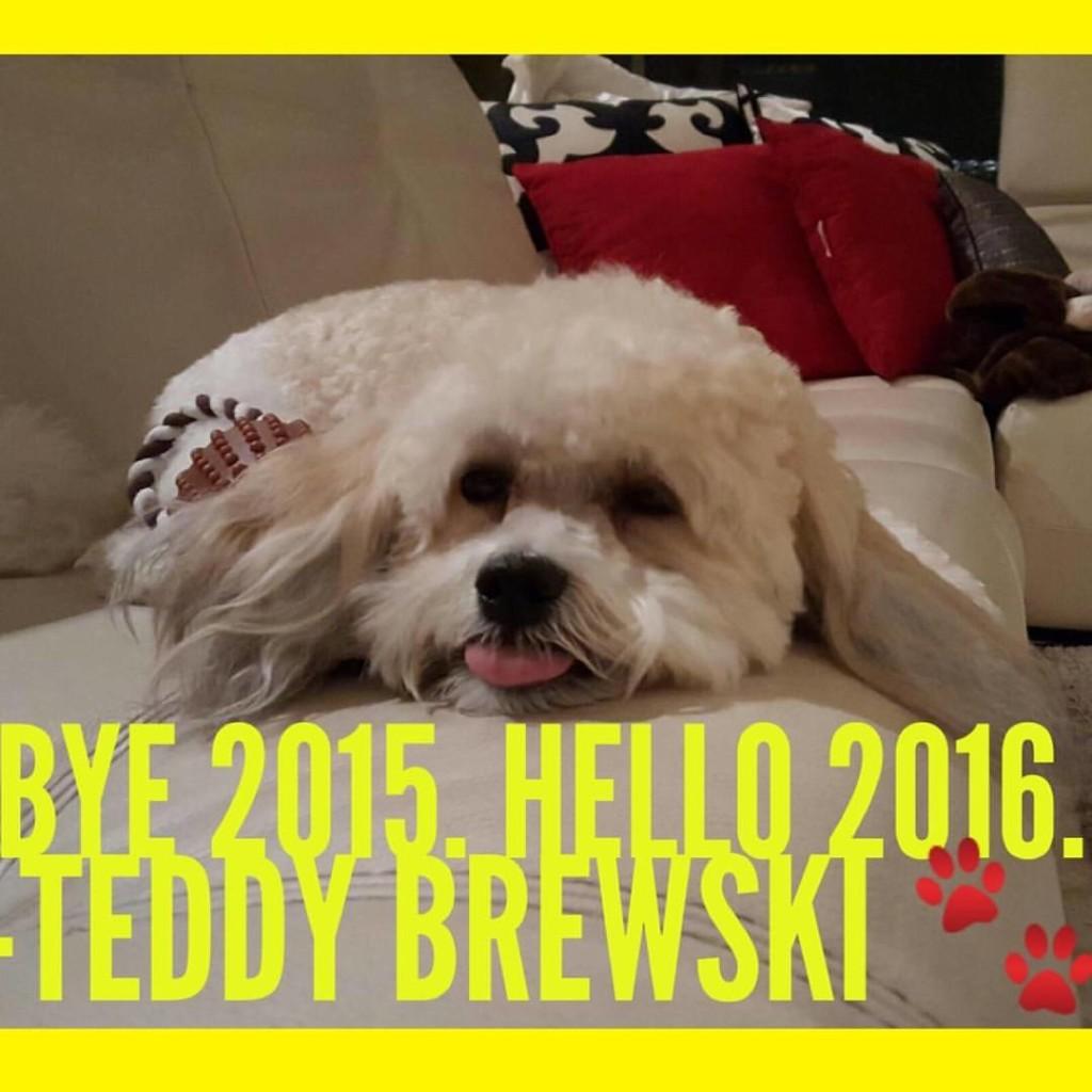 Bye 2015. Hello 2016. -Teddy Brewski