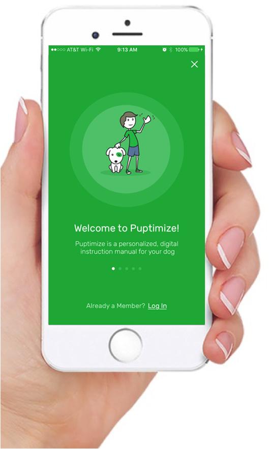 Puptimize App
