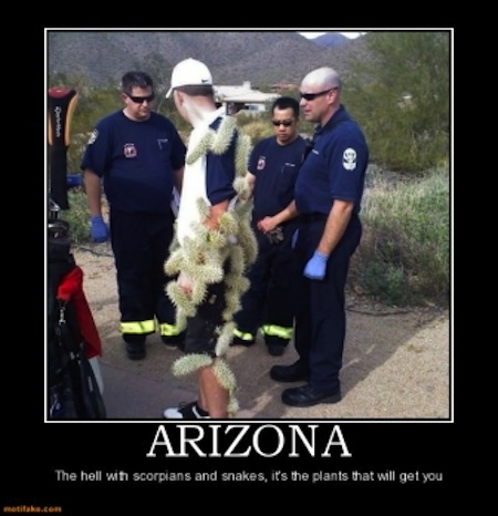 arizona-travel-demotivational-posters-1340484228 (1)