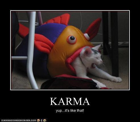 people like karma memes