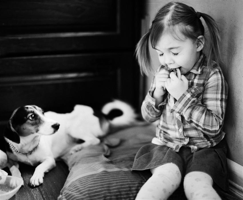 DOG by Talia Rainyk