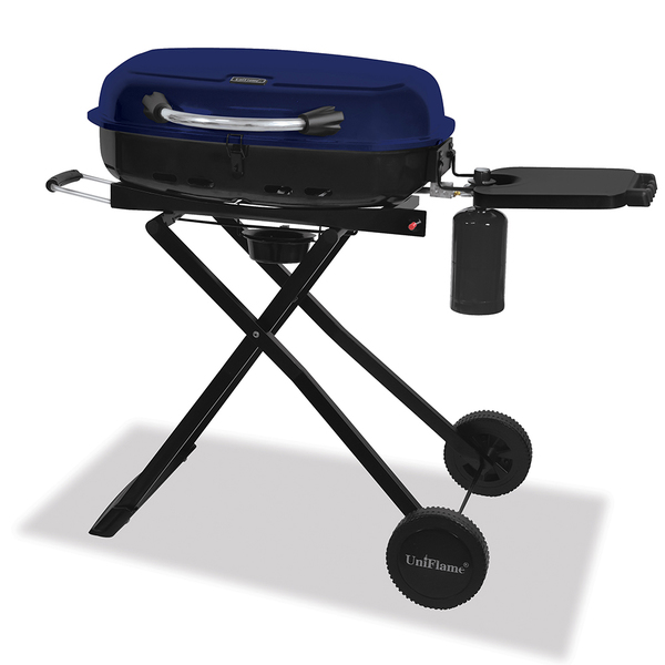Portable gas grill from Overstock