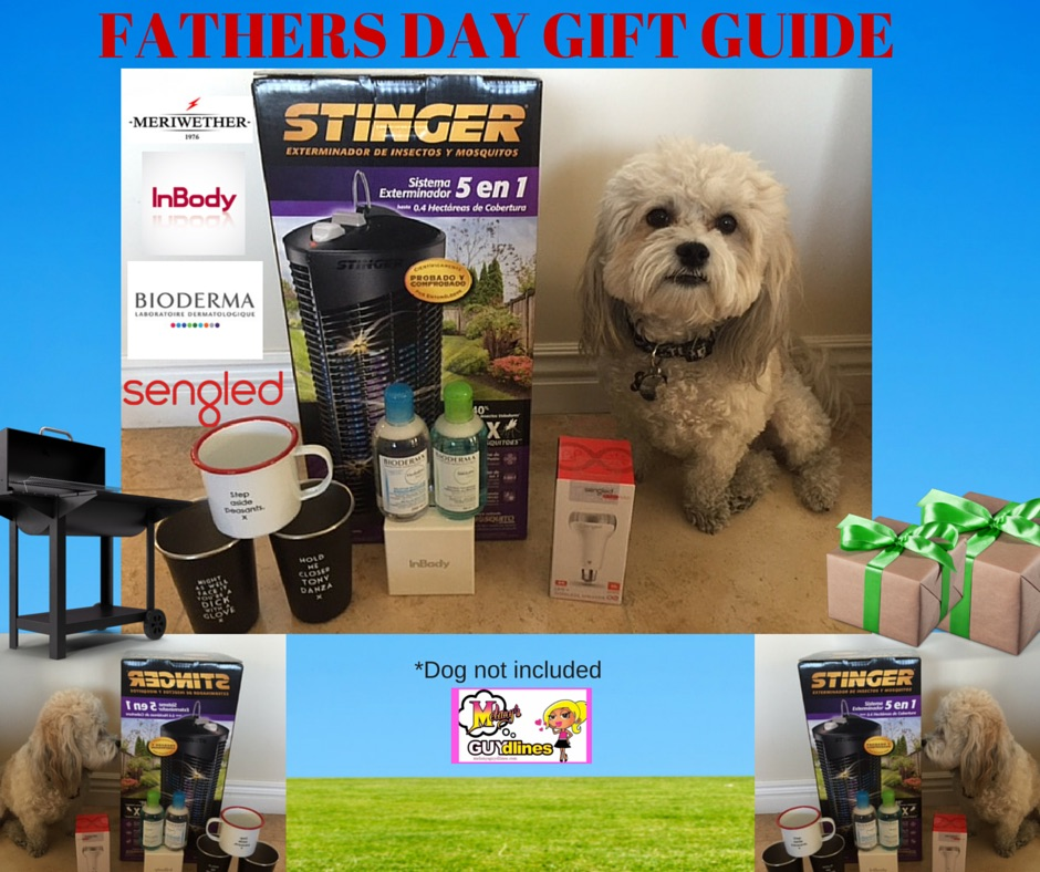 Father Day Gift Guide 2016 Dog Not Included